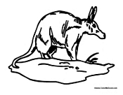 Free Aardvark Coloring Page