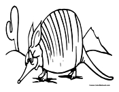 armadillo coloring pages for kids to color and print