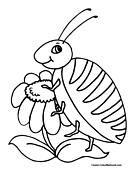 Beetle Coloring Page 1