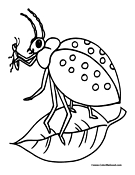 Beetle Coloring Page 2
