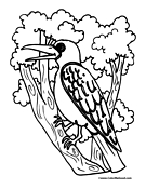 Bird Coloring Page 3