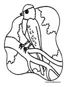 Bird Coloring Page 5