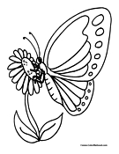Butterfly Coloring Page 5