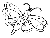 Butterfly Coloring Page 6