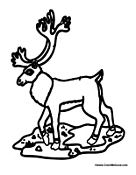 Caribou Coloring Pages