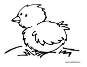 Chicken Coloring Page 5