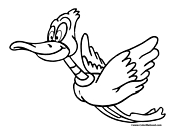 Duck Coloring Page 12