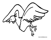 Eagle Coloring Page 5