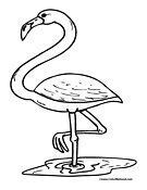 Flamingo Coloring Page 1