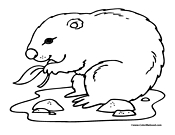 gopher coloring page 1