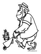pictures of gorillas coloring pages animal