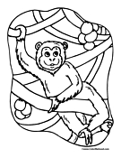 Monkey Coloring Page 2