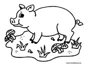 Pig Coloring Page 1