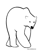 Polar Bear Coloring Page 1