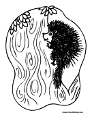 Porcupine Coloring Page 1