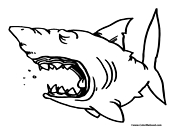 Shark Coloring Page 5