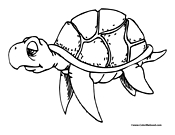 Turtle Coloring Page 10