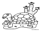 Turtle Coloring Page 11