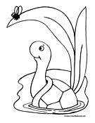 Turtle Coloring Page 13