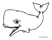 Whale Coloring Page 4