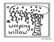 Weeping Willow Tree Poster