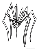 Spider Coloring Page 2
