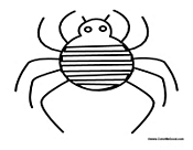 Basic Spider Outline