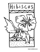 Hibiscus Flower to Color